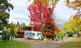 Queenstown Holiday Park & Motels Creeksyde Celebrates 30 Year Anniversary and EarthCheck Master Certification